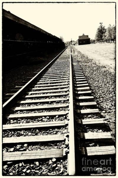 Photograph - Tracks Of Our Ancestors by Leslie Leda