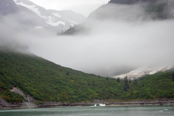 Tracy Arm Inlet Art Print