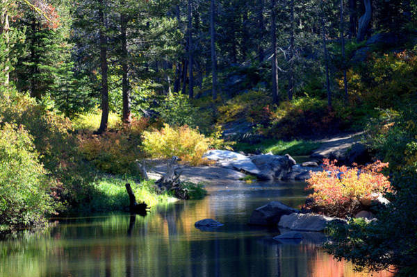 Yuba River Photograph - Tranquility by Lynn Bawden