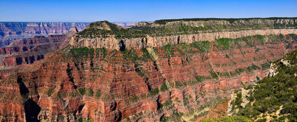 Photograph - Transept Panorama by Greg Norrell
