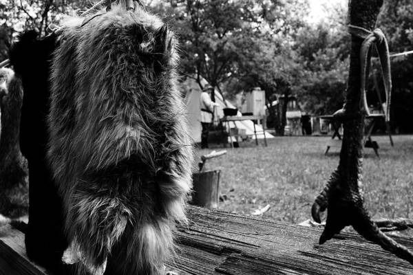 Photograph - Trapper's Bounty by Scott Hovind