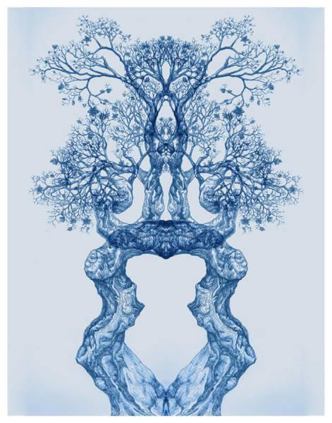 Digital Art - Tree 14 Blue 2 by Brian Kirchner