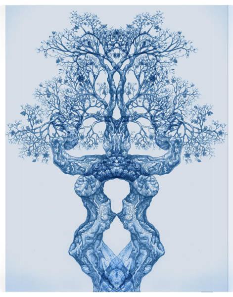Digital Art - Tree 14 Blue 3 by Brian Kirchner