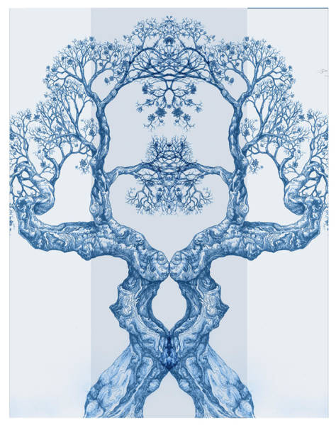 Digital Art - Tree 14 Blue 6 by Brian Kirchner