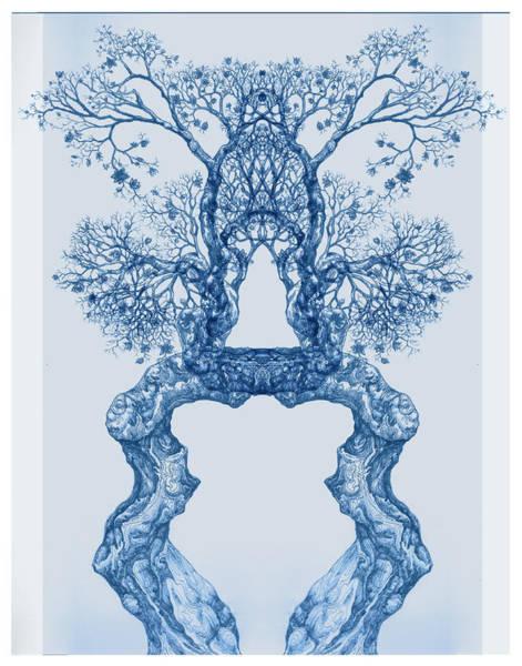 Digital Art - Tree 14 Blue 8 by Brian Kirchner