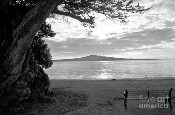 Devonport Wall Art - Photograph - Tree And Ocean And Bench And Volcano by Yurix Sardinelly