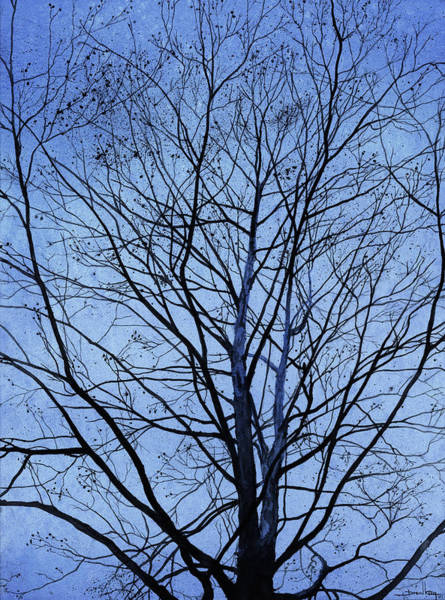Sycamore Painting - Tree In Winter by Andrew King