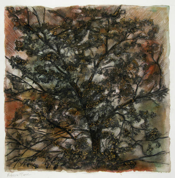 Impressionistic Landscape Drawing - Tree Of Life by Rebecca Moore