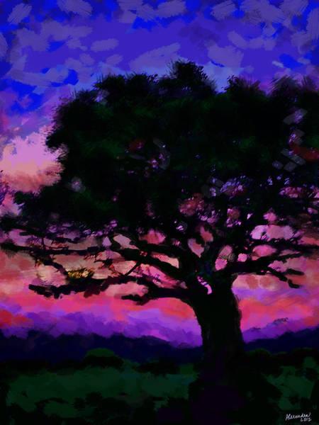 Wall Art - Photograph - Tree Siluette At Sunset  by Alexandra Jordankova