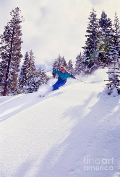 Wall Art - Photograph - Tree Skiing Northstar by Vance Fox