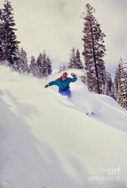 Wall Art - Photograph - Tree Skiing Powder by Vance Fox