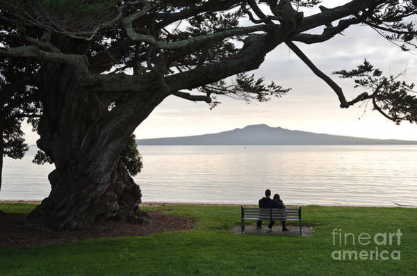 Devonport Wall Art - Photograph - Tree Volcano And Lovers by Yurix Sardinelly