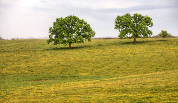 Warrenton Wall Art - Photograph - Tres by JC Findley