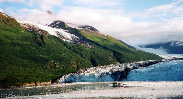 Photograph - Trip To Glacier Bay by C Sitton