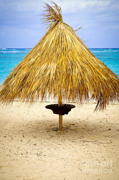 Photograph - Tropical Beach Umbrella by Elena Elisseeva