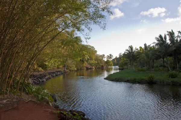 Allerton Garden Photograph - Tropical River by Peggy Zachariou