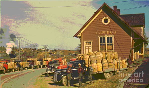 Aroostook County Photograph - Trucks At Starch Factory by Padre Art
