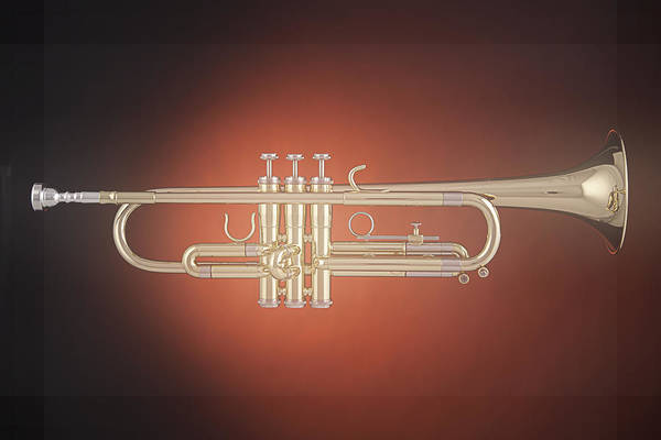 Photograph - Trumpet Soft Spotlight by M K Miller