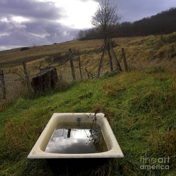 Tub Wall Art - Photograph - Tub In Nature by Bernard Jaubert