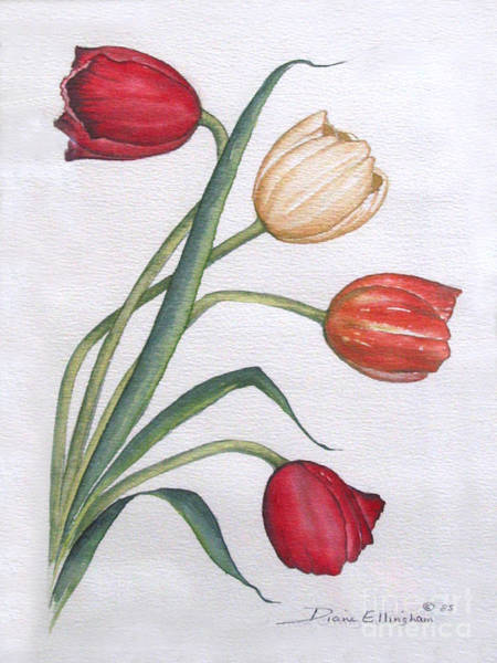 Painting - Tulips by Diane Ellingham