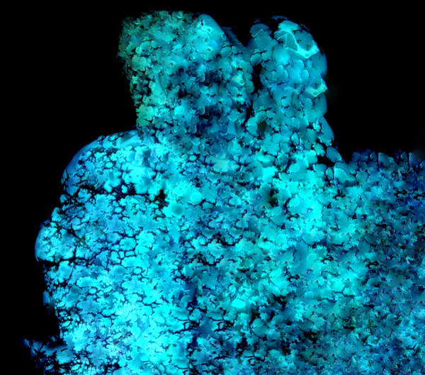 Photograph - Turquoise Stone Nature Protection by Colette V Hera  Guggenheim