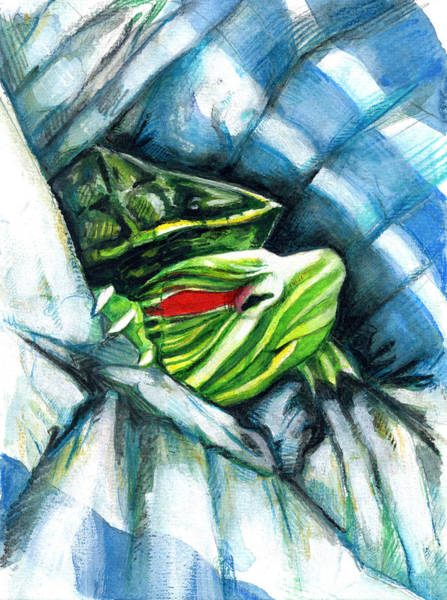 Painting - Turtle In A Blanket by Rene Capone