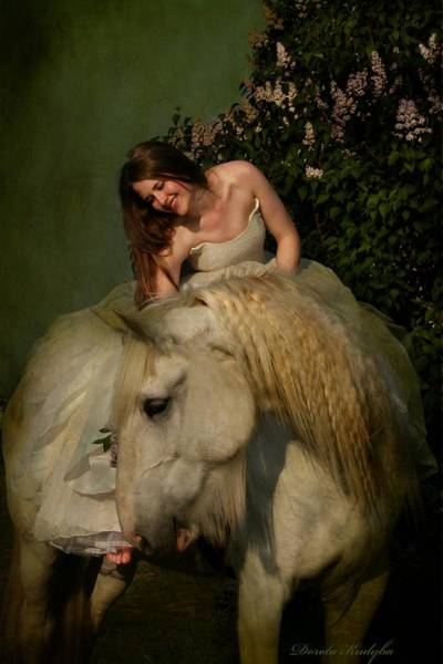 Grey Horse Photograph - Two Beautiful Ladies by Dorota Kudyba