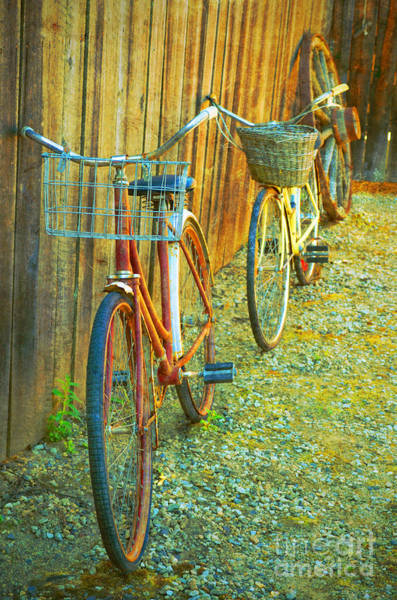Photograph - Two Bicycles by Tara Turner