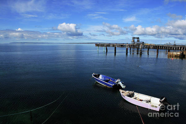 Photograph - Two Dinghy Harbour by Stephen Mitchell