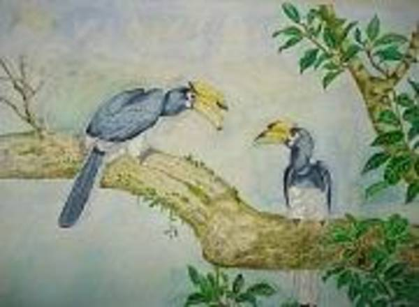 Hornbill Painting - two Indian Horn Bill by Saurav Das