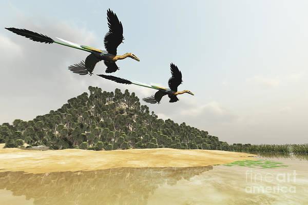 Marsh Bird Digital Art - Two Microraptor Dinosaurs Fly by Corey Ford