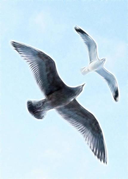 Hakon Photograph - Two Seagulls by Hakon Soreide