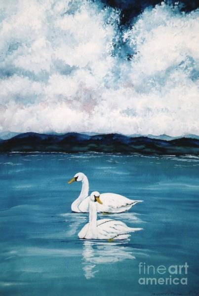 Water Foul Painting - Two Swans A Swimming by Patti McEntire