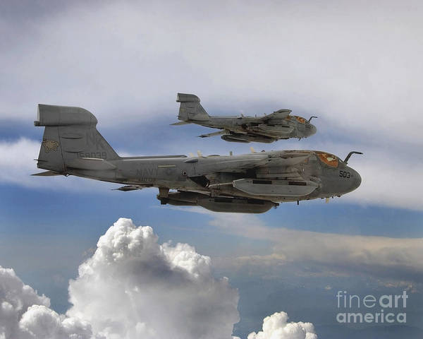 Prowler Photograph - Two U.s. Navy Ea-6b Prowlers Flying by Stocktrek Images