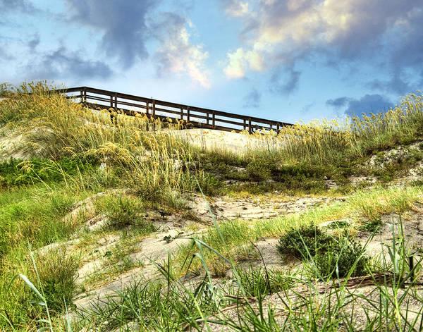 Wall Art - Photograph - Tybee Island Dunes No.2 by Tammy Wetzel