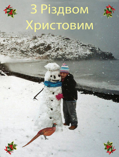 Mixed Media - Ukrainian  Merry Christmas  by Eric Kempson