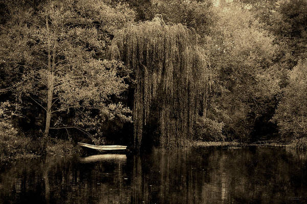 Photograph - Under The Weeping Willow Tree by Sarah Broadmeadow-Thomas