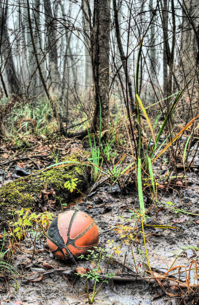 Basket Stars Photograph - Unfulfilled Dreams  by JC Findley
