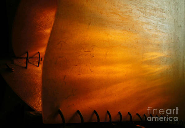 Photograph - Unwritten Story  by Cj Mainor