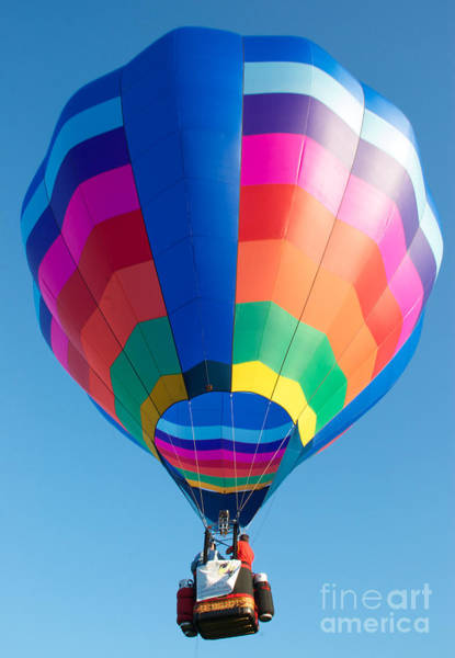 Photograph - Up And Away by Mark Dodd