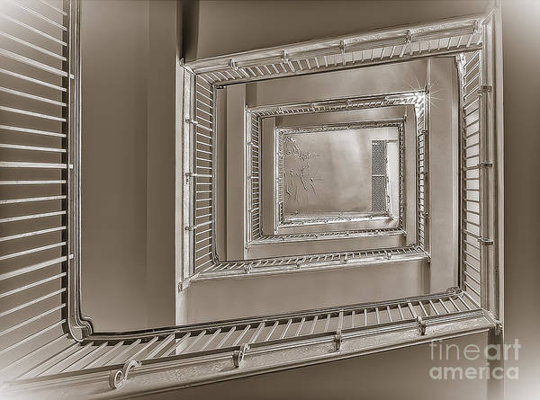 Photograph - Up Or Down We Go by Susan Candelario