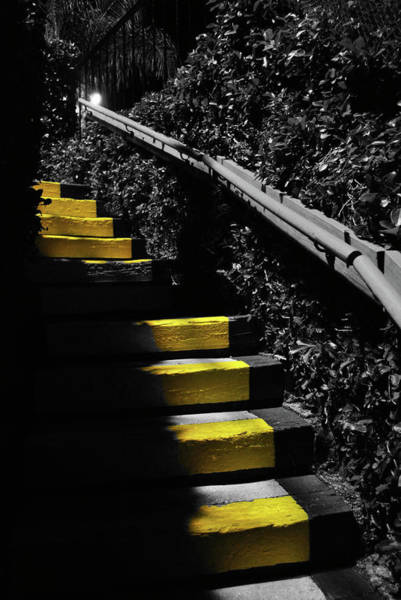 Steps Photograph - Up To Something by Amanda Vouglas