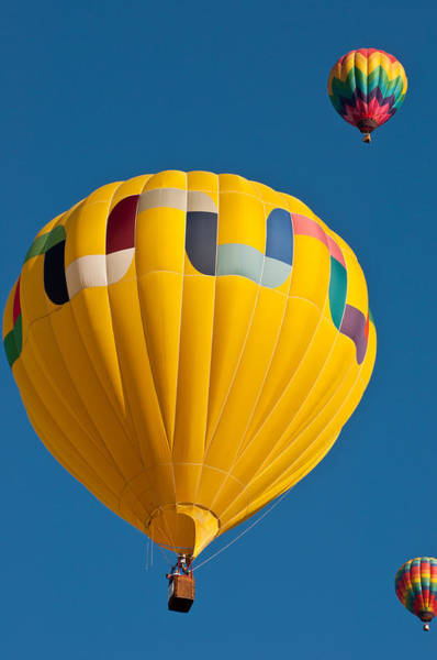 Photograph - Up Up And Away by Colleen Coccia