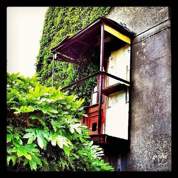 Norfolk Photograph - Urban Decay - Rusty Door #rust #door by Invisible Man