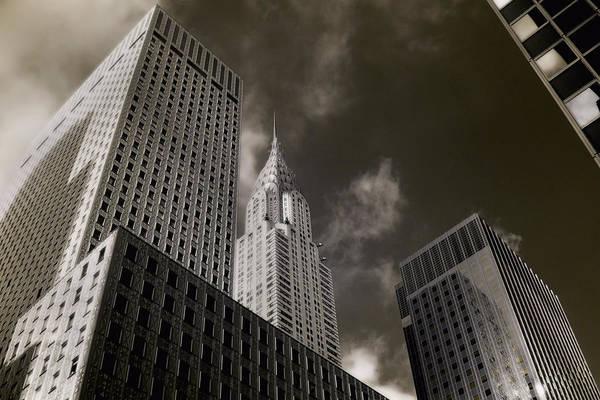 Photograph - Urban Jungle by Joann Vitali