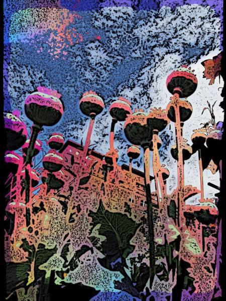 Pea Digital Art - Urban Poppy by Tim Allen