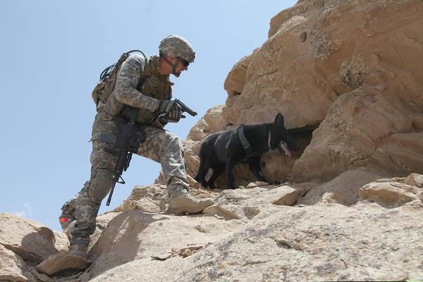 Dod Wall Art - Photograph - Us Soldier And Blek A Working Dog Clear by Everett