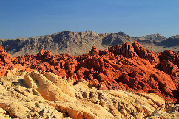 Photograph - Valley Of Fire Colorful Landscape by Pierre Leclerc Photography