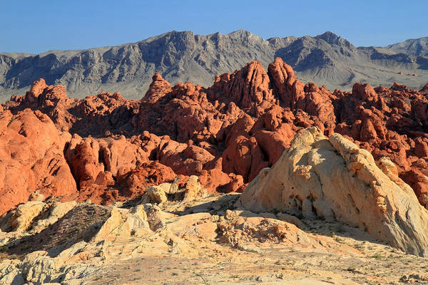 Photograph - Valley Of Fire Landscape by Pierre Leclerc Photography
