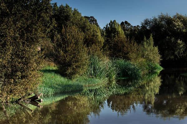 Photograph - Vanity On The Water by Edgar Laureano